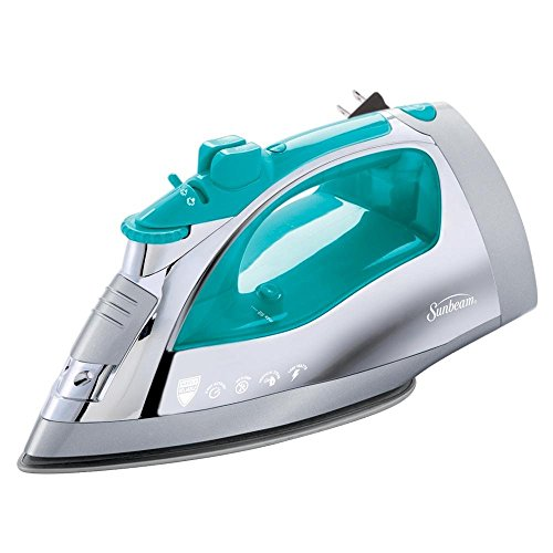 Top 11 Steam Irons in 2019