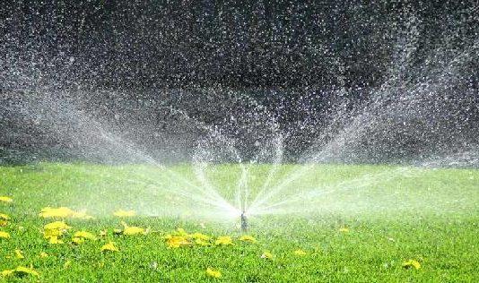 10 Best Lawn Sprinklers