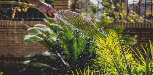 how to fix a garden hose